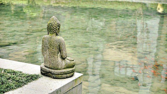 Meditazione FIDUCIA IN CIO' CHE SENTI.